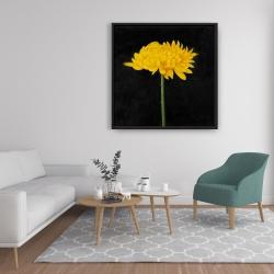 Framed 36 x 36 - Chrysanthemum