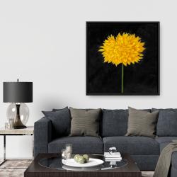 Framed 36 x 36 - Yellow chrysanthemum