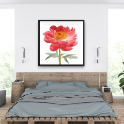 Framed 36 x 36 - Pink peony