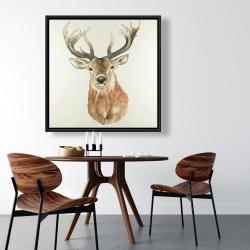 Framed 36 x 36 - Front deer portrait