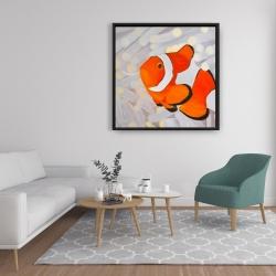 Framed 36 x 36 - Clownfish