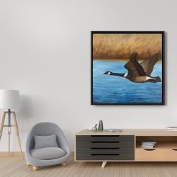 Framed 36 x 36 - Canada goose