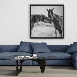Framed 36 x 36 - Horses lover