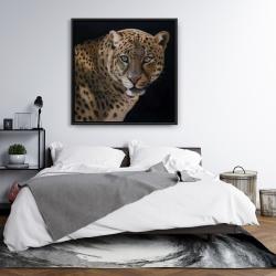 Framed 36 x 36 - Realistic fierce leopard