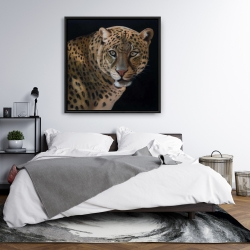 Framed 36 x 36 - Realistic fierce leopard