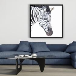 Framed 36 x 36 - Zebra