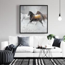 Framed 36 x 36 - Herd of wild horses