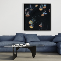Framed 36 x 36 - Colorful jellyfishes swimming in the dark