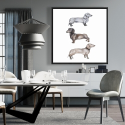 Framed 36 x 36 - Dachshund dogs