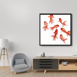 Framed 36 x 36 - Red fishes