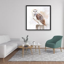 Framed 36 x 36 - Barn owl