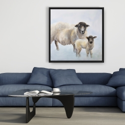 Framed 36 x 36 - Sheep and its baby
