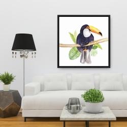 Framed 36 x 36 - Toucan