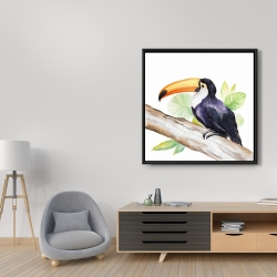 Framed 36 x 36 - Toucan perched