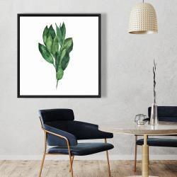 Framed 36 x 36 - Bay leaves bundle