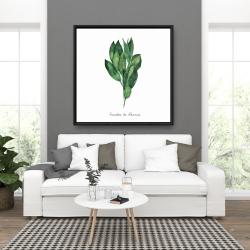 Framed 36 x 36 -  bay leaves bundle - fr