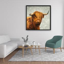 Framed 36 x 36 - Highland cattle