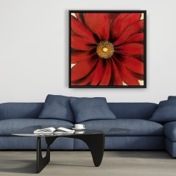 Framed 36 x 36 - Red daisy