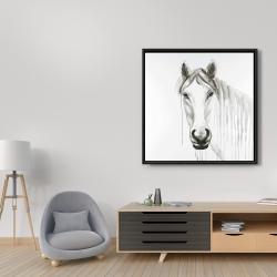 Framed 36 x 36 - Solitary white horse