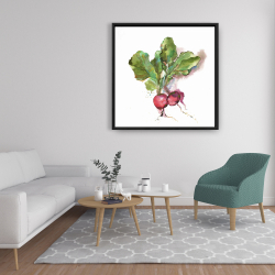 Framed 36 x 36 - Watercolor radish