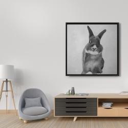 Framed 36 x 36 - Funny gray rabbit