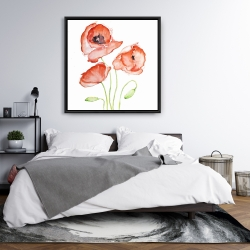 Framed 36 x 36 - Watercolor poppies