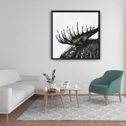 Framed 36 x 36 - Moose plume