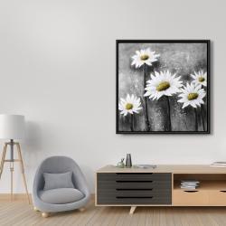 Framed 36 x 36 - Daisies