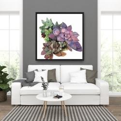Framed 36 x 36 - Succulent plant