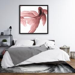 Framed 36 x 36 - Red betta fish