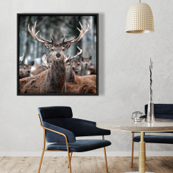 Framed 36 x 36 - Stags