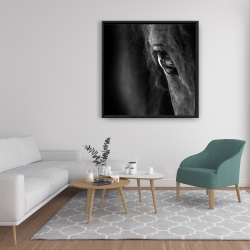 Framed 36 x 36 - Black horse