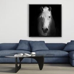 Framed 36 x 36 - Monochrome horse