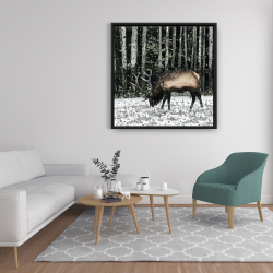 Framed 36 x 36 - Caribou in the forest