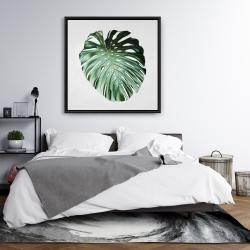 Framed 36 x 36 - Monstera leaf