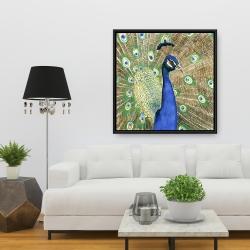 Framed 36 x 36 - Peacock
