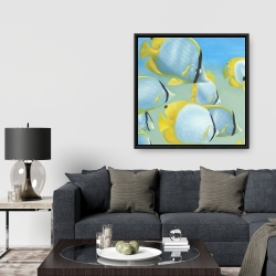 Framed 36 x 36 - Butterfly fishes