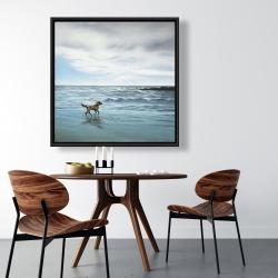 Framed 36 x 36 - Dog on the beach