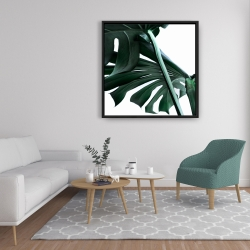 Framed 36 x 36 - Monstera deliciosa
