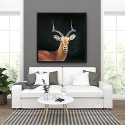 Framed 36 x 36 - Antelope
