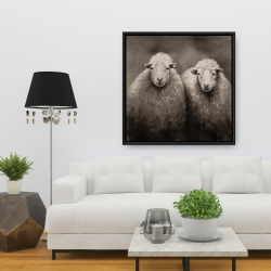 Framed 36 x 36 - Sheep sepia