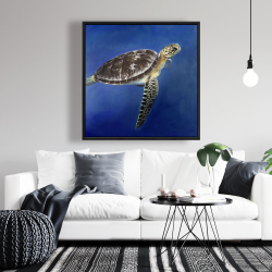 Framed 36 x 36 - Turtle in the ocean