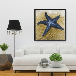 Framed 36 x 36 - Beautiful starfish
