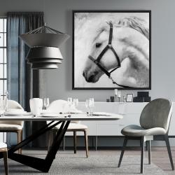 Framed 36 x 36 - Darius the horse