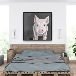 Framed 36 x 36 - Little piglet
