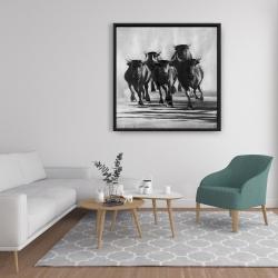 Framed 36 x 36 - Group of bulls at galops