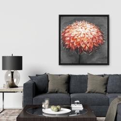 Framed 36 x 36 - Abstract dahlia flower