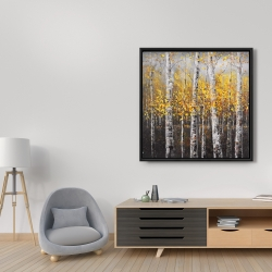Framed 36 x 36 - Sunny birch trees