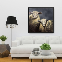 Framed 36 x 36 - Two sheeps