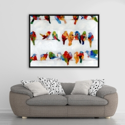 Framed 36 x 48 - A lot of colorful birds on a wire